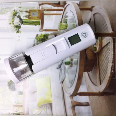 慧思宝 足银小猪补水仪 纳米喷雾便携式手持加湿器 家用美容仪